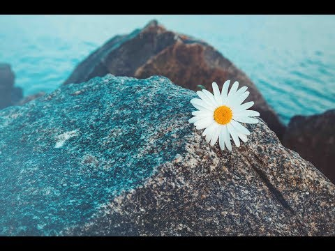 Relaxing Music, Peaceful Music, Instrumental Music