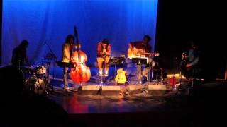 "Shahin Najafi live in Göteborg ""Ranandegi Dar Masti"" 3/3/2013"