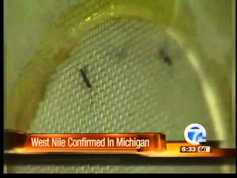 West Nile Virus Case Confirmed in Michigan