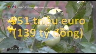 Tương lai nào cho nông nghiệp hữu cơ Việt Nam?