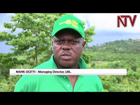 Government partners with UBL in tree planting