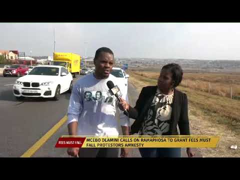 Fees must fall activist Mcebo Dlamini walks from Johannesburg to Pretoria