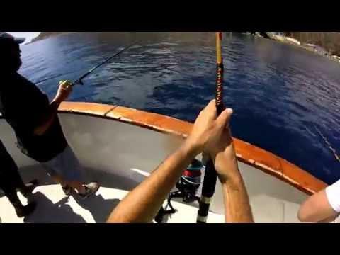 Yellowtail Fishing - 30 Lb Catch @ Catalina Island