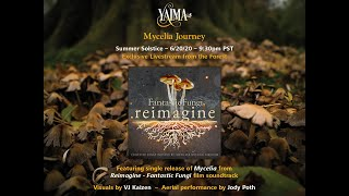Mycelia Journey - YAIMA MUSIC -  Concert from the Forests of Pacific Northwest.