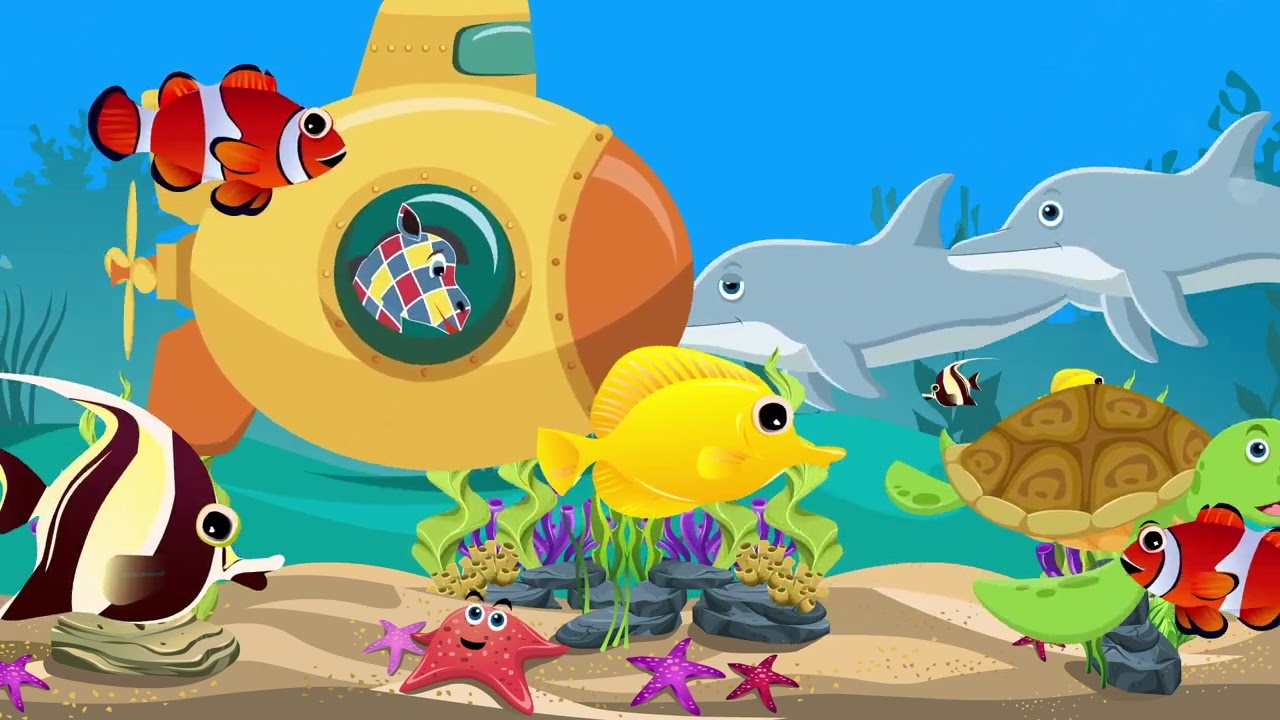 Морские обитатели - Зебра в клеточку - Песенки для детей