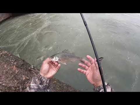 Fishing At Oxford Dam, NC