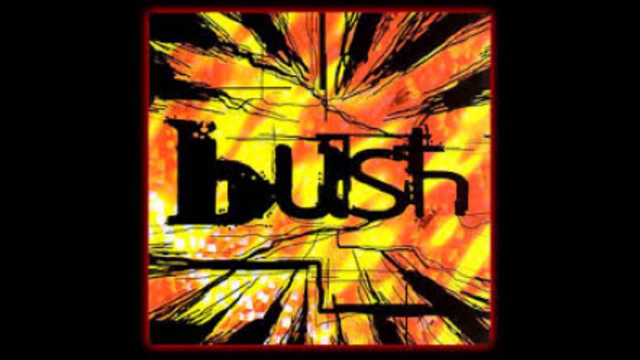 bush-my-engine-is-with-you-matt-ellison