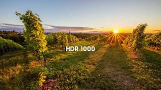 Samsung SUHD TV - HDR 1000