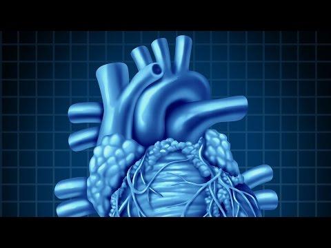 Human Physiology - Central Venous Pressure, Part 1