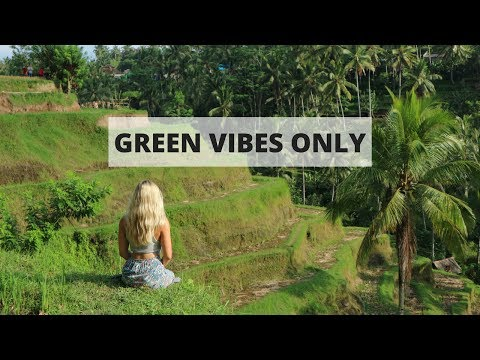 BALI PART ONE | Exploring Ubud