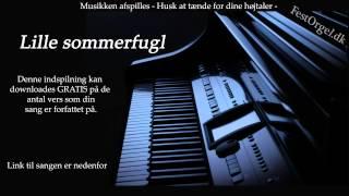Lille sommerfugl - Bjørn Tidmand