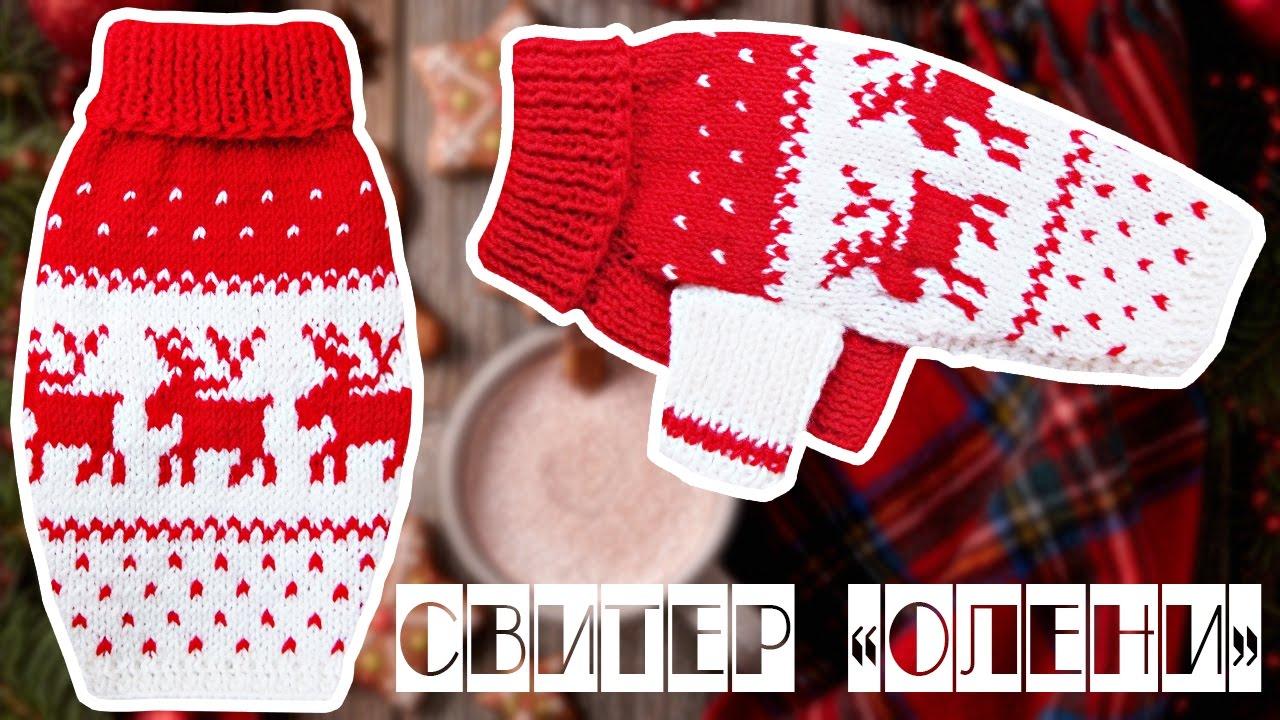 Свитер мужской с оленями красный свт007анс. Свитер 100% шерсть женский с оленями (парная модель) свт1112е.
