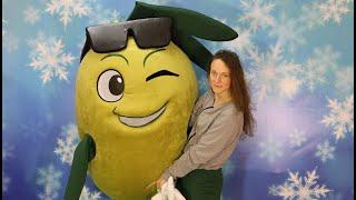 Olive mascot costume for promotion food market   Anastasia mascot costumes
