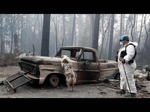 euronews (en español): Hecatombe en California: 66 muertos y 631 desaparecidos