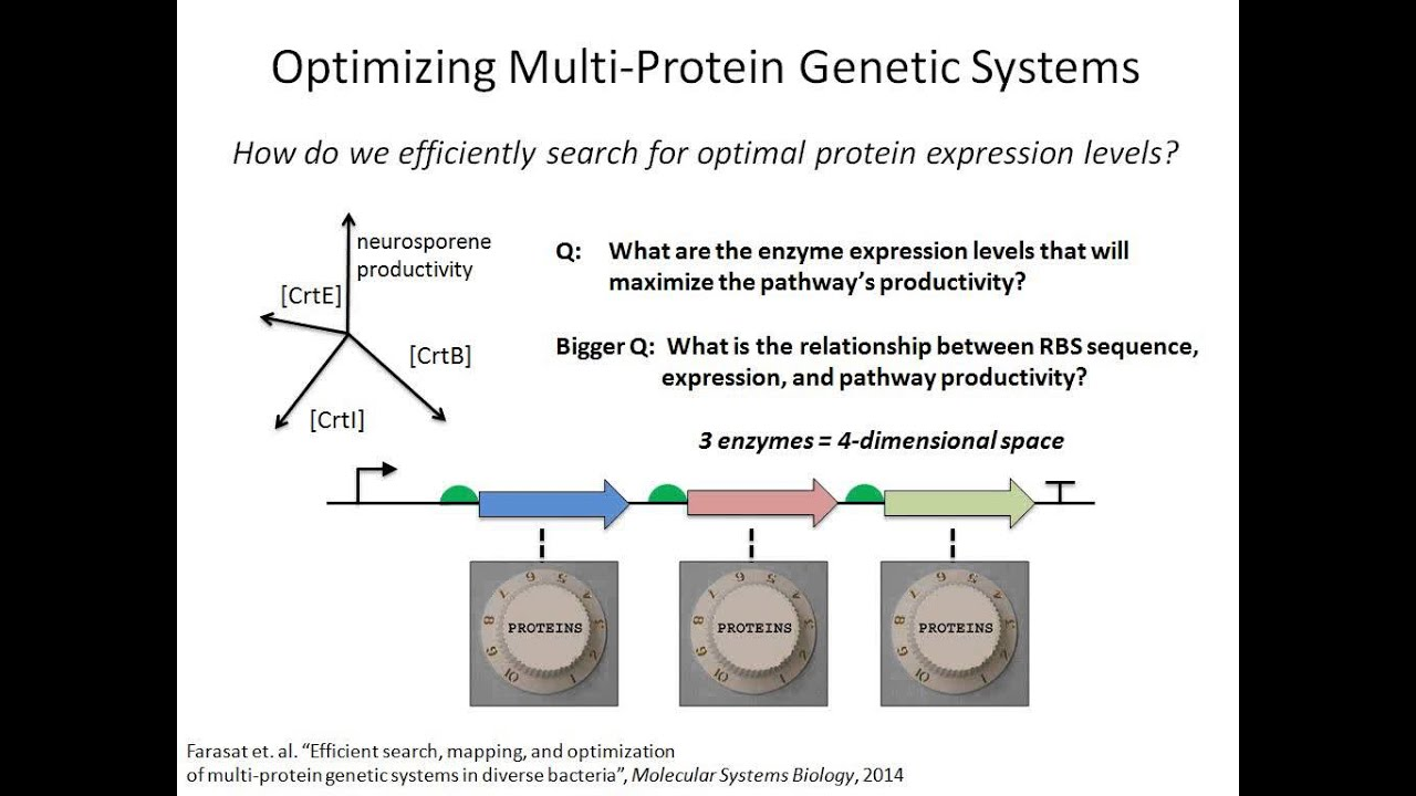 Efficient expression optimization of proteins and pathways using the efficient expression optimization of proteins and pathways using the rbs calculator ccuart Image collections