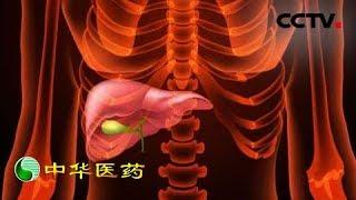 《中华医药》 20190727 与肿瘤的生死对抗  CCTV中文国际