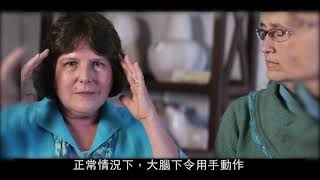 Publication Date: 2021-01-08 | Video Title: 華德福教育Preparing for Life 為人生做準備