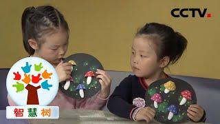 《智慧树》 20201214| CCTV少儿 - YouTube