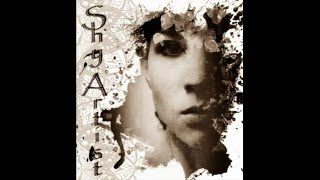 ShyArtist - Pie jesu