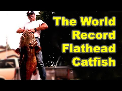 World Record Flathead Catfish