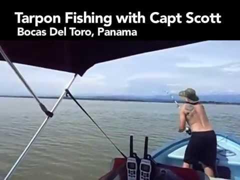 Tarpon Fishing In Bocas Del Toro Panama