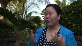 Ile Maurice : Développement Touristique et Hôtelier
