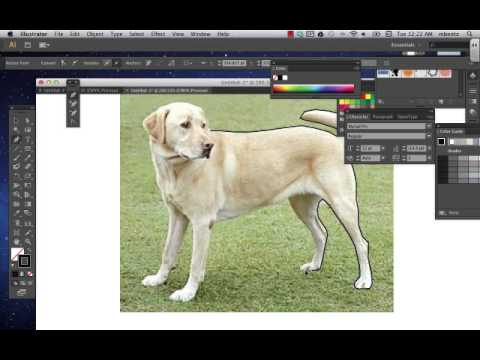 Download photoshop cs5 full crack vn zoom