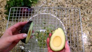 Kitchen Hack How To Make Quick And Easy Guacamole