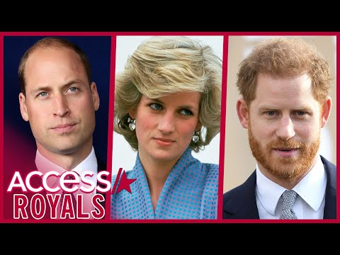 Prince William & Prince Harry React To Princess Diana Intv Findings
