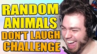 RANDOM ANIMALS DON'T LAUGH CHALLENGE