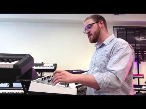 Roland's D-Beam Demo - Woodsy's Music