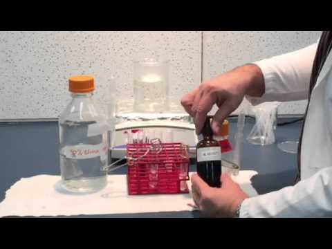 Benedict test for simple sugars