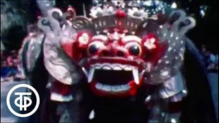 Жгучие тайны века (1981)