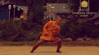 Shaolin 13 Luohan Rou Quan Routine · Shaolin Nei Gong Excercise