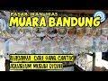 Pasar ikan hias muara bandung #part 2 (  ikan laut )