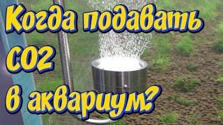 Углекислый газ СО2  для аквариума! Когда стоит подавать CO2  в аквариум!