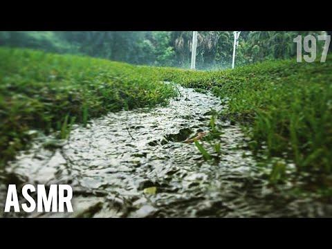 ASMR   Rainy Day Routine (Breakfast Inside and Rain Outside)