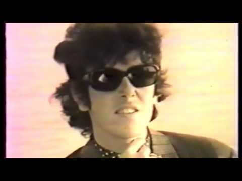 Donovan - 1966 Swedish interview/performance RARE!!