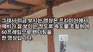 샤오미 YI액션캠 타임…