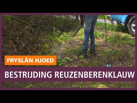Súdwest Fryslân: ervaringen met herindeling