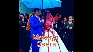 Курдская свадьба Алматы Каскелен Махмуд и Света Kurdish Wedding