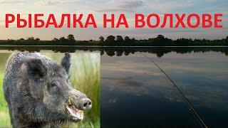 Рыбалка на реке Волхов щука на дорожку