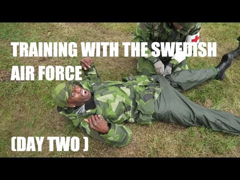 SWEDISH AIR FORCE (DAY TWO )