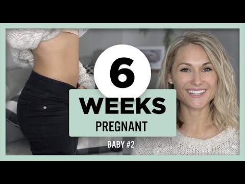 6 Weeks Pregnant Update | Rainbow Baby, Nesting already !?