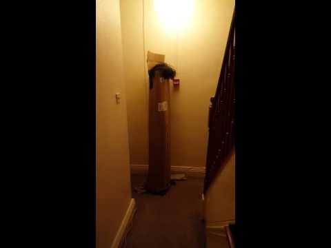 Ghost caught on camera 9/1/16 18+