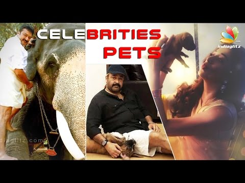 Celebrities Pets | Indian Actors and Actress who love pets | Dog, Cat, Horse