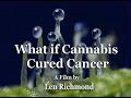 What if Cannabis Cured Cancer? (2011)
