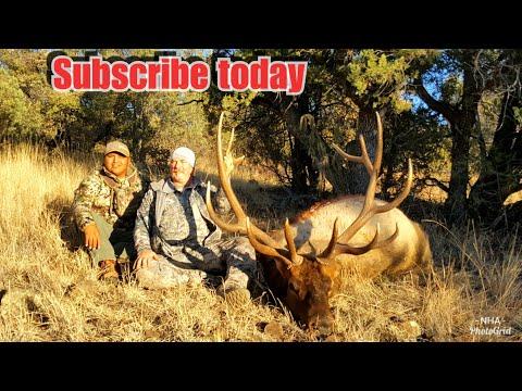San Carlos Elk January Malay Gap Part.1