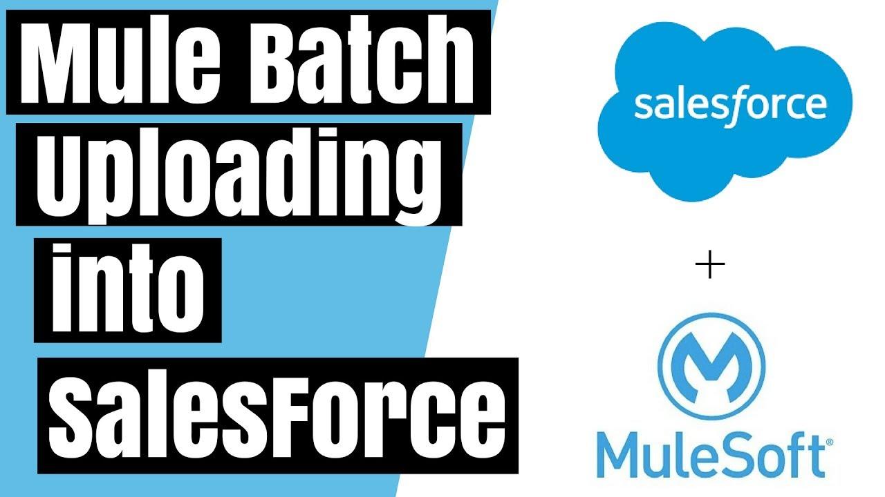 Mule Batch Uploading to SalesForce