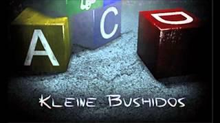 Bushido Kleine Bushidos HQ